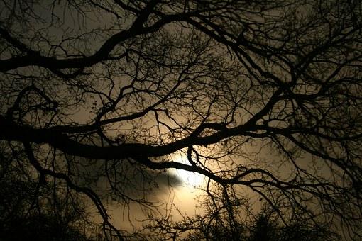 darkness-1232724__340.jpg