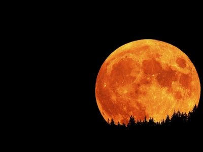 Nature_Moons_harvest_Moon_Night_orange_sky_126944_detail_thumb.jpg